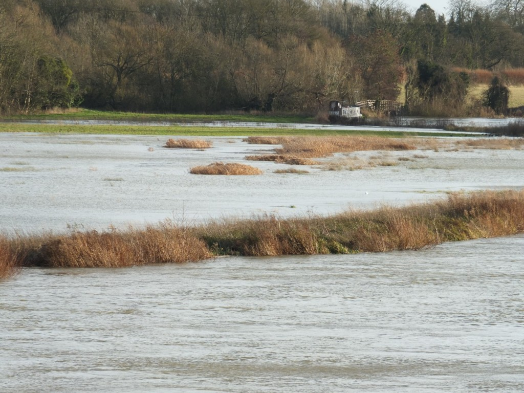 What Is A Floodplain And Why Is It So Confusing