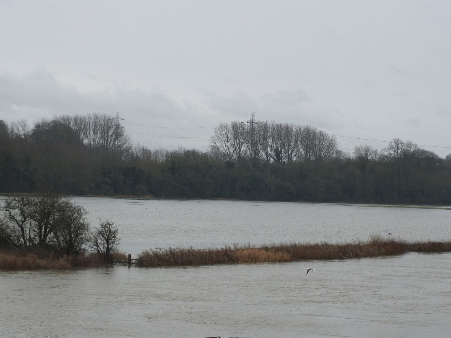 Environment Agency Flood Risk Assessment Rejection